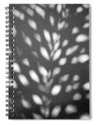 Monadas Limited Edition 1/1 Spiral Notebook