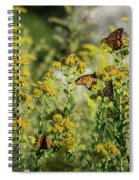 Monarch 6 Spiral Notebook