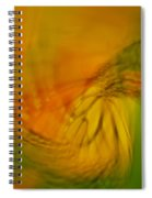 Monarch Abstract Spiral Notebook