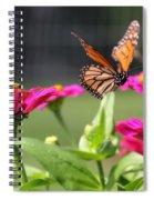 Monarch Approaching Zinnia Spiral Notebook