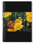 #002 Monarch Bumble Bee Sharing Spiral Notebook