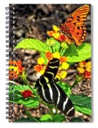 Monarch Butterfly And Zebra Butterfly Spiral Notebook