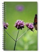 Monarch Butterfly Balanced 2017 Spiral Notebook