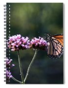 Monarch Butterfly IIi Spiral Notebook