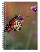 Monarch Butterfly In Autumn 2011 Spiral Notebook
