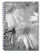 Monarch Butterfly In Black And White Spiral Notebook