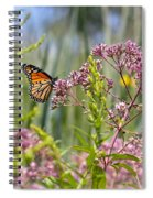 Monarch Butterfly In Joe Pye Weed Spiral Notebook