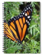 Monarch Butterfly In Lush Leaves Spiral Notebook