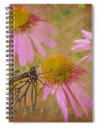Monarch Butterfly In Pink Spiral Notebook