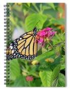 Monarch Butterfly On A Flower  Spiral Notebook