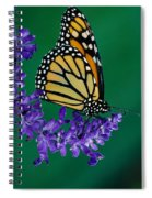 Monarch Butterfly On Flower Blossom Spiral Notebook