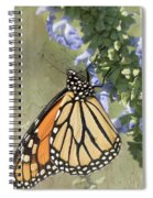 Monarch Butterfly Textured Background Spiral Notebook