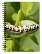 Monarch Caterpillar Spiral Notebook