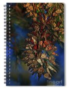 Monarch Cluster Spiral Notebook