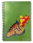 Queen Hanging Around Spiral Notebook