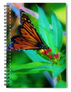 Monarch Heaven Spiral Notebook