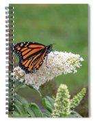 Monarch On A Butterfly Bush Spiral Notebook