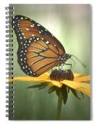Monarch On A Black Eyed Susan Spiral Notebook