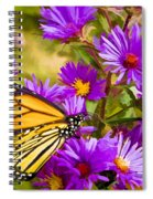 Monarch On Mt. Washington Spiral Notebook