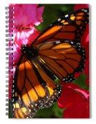 Monarch On Summer Geraniums Spiral Notebook