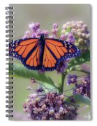 Monarch On The Milkweed Spiral Notebook
