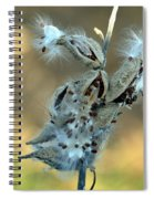 Monarch Seeds Spiral Notebook