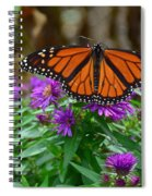 Monarch Spreading Its Wings Spiral Notebook