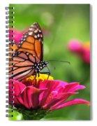 Monarch Visiting Zinnia Spiral Notebook