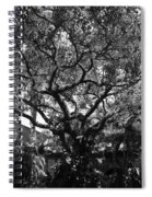 Monastery Tree Spiral Notebook