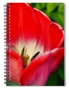 Monet Garden Red Tulip Spiral Notebook