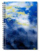 Monet Like Water Spiral Notebook