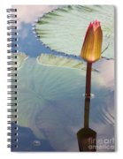 Monet Water Lily Stem Red Orange Spiral Notebook