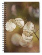 Money Plant Spiral Notebook
