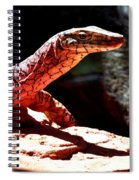 Monitor Lizard Spiral Notebook