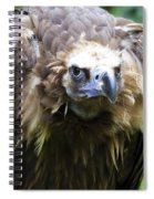 Monk Vulture 3 Spiral Notebook