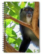 Monkey Spiral Notebook