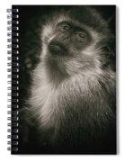 Monkey Portrait Spiral Notebook