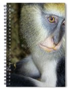 Monkey With His Mango Spiral Notebook