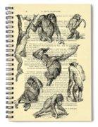 Monkeys Black And White Illustration Spiral Notebook