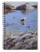 Mono Lake Spiral Notebook