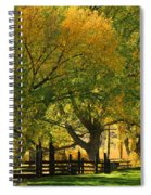 Mono Lake Fall In The Mountains Spiral Notebook