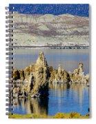 Mono Lake Spires Spiral Notebook