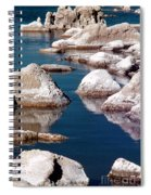 Mono Lake Tufa Spiral Notebook