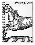 Monster Spiral Notebook