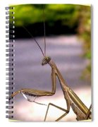 Monster Mantis Spiral Notebook