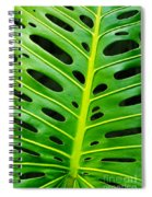Monstera Leaf Spiral Notebook