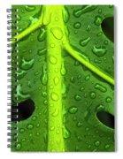 Monstera Rain Spiral Notebook