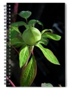 Monstrous Plant Bud Spiral Notebook