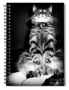 Monty Our Precious Cat Spiral Notebook