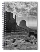 Monument Valley Horses Spiral Notebook